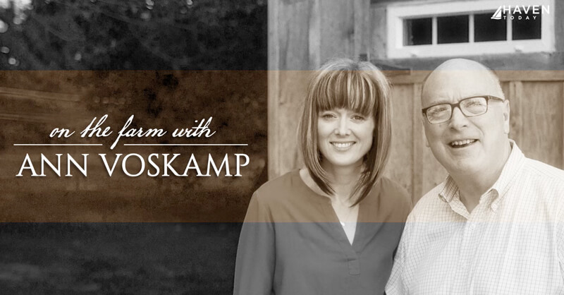 Ann Voskamp's Broken Path to the Abundant Life